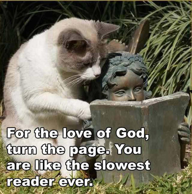 RandomCat_slowestReader